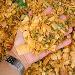 Wood Chip Services
